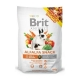 Brit animals 100g Alfalfa snack
