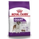 Royal Canin 15kg giant Adult dog