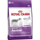 RC 15kg giant Junior dog 94